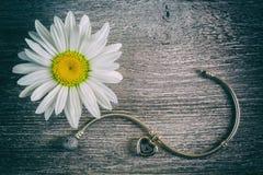 Flor de plata de la pulsera y de la manzanilla Imagen de archivo libre de regalías