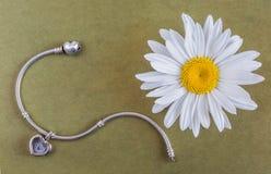 Flor de plata de la pulsera y de la manzanilla Foto de archivo libre de regalías