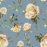 Flor de Rosa em um galho Teste padrão floral sem emenda Pintura da aguarela Ilustração desenhada mão Foto de Stock