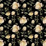 Flor de Rosa em um galho Teste padrão floral sem emenda Pintura da aguarela Ilustração desenhada mão Imagens de Stock