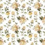 Flor de Rosa em um galho Teste padrão floral sem emenda Pintura da aguarela Ilustração desenhada mão Imagens de Stock Royalty Free