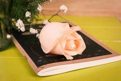 Flor de Rosa no livro de nota fotografia de stock