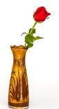 Flor de Rosa no vaso Fotografia de Stock Royalty Free