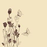 Flor de Rose con el fondo de la mariposa Foto de archivo libre de regalías