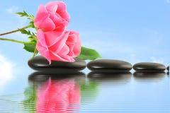 Flor de Rose en piedra con la reflexión del agua en fondo del cielo Imagenes de archivo