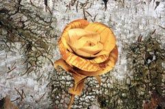 Flor de Rose hecha a mano de corteza de abedul en la corteza de abedul vieja Foto de archivo