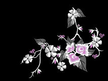 Flor de Sakura Fotografia de Stock