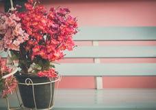 flor de Sakura del estilo del vintage Imagen de archivo libre de regalías