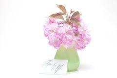 Flor de Sakura en un florero y una tarjeta Imagen de archivo libre de regalías