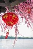Flor de Sakura, flor falsa Foto de archivo libre de regalías
