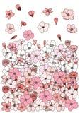 Flor de Sakura para imprimir no papel Fotos de Stock