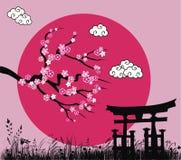 Flor de sakura y puerta japoneses de los toros Fotografía de archivo