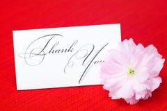 Flor de Sakura y una tarjeta Imagenes de archivo