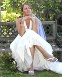 Flor de Shannon Imagens de Stock Royalty Free