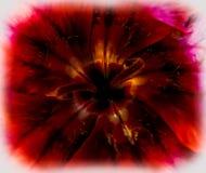 Flor 2 de Slimey Fotos de Stock