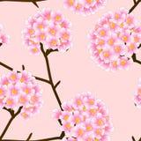 Flor de trompeta rosada en fondo de marfil beige Ilustración del vector Imagenes de archivo