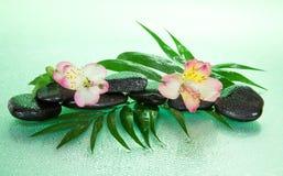 Flor de un alstroemeria y de piedras Imagenes de archivo