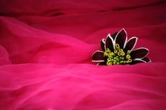 Flor decorativa Fotografia de Stock