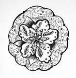Flor decorativa preto e branco em um fundo branco Fotografia de Stock Royalty Free