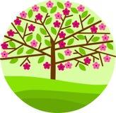 Flor del árbol del resorte con las flores y las hojas Foto de archivo