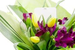 Flor del Alstroemeria fotos de archivo