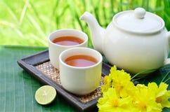 Flor del amarillo de la pizca del té Fotografía de archivo