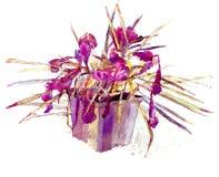 Flor del azafrán fotos de archivo libres de regalías