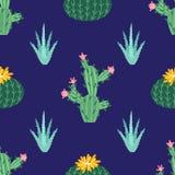 Flor del cacto Cactus brillantes, hojas del áloe, historieta tropical de la flora de los cactus de las plantas del desierto sucul libre illustration