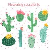 Flor del cacto Cactus brillantes, hojas del áloe, historieta tropical de la flora de los cactus de las plantas del desierto sucul ilustración del vector