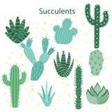 Flor del cacto Cactus brillantes, hojas del ?loe, historieta tropical de la flora de los cactus de las plantas del desierto sucul libre illustration