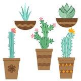 Flor del cactus en los potes para las flores y las plantas Cactus brillantes, hojas del áloe, flora tropical de los cactus de las stock de ilustración