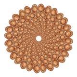 Flor del coco Imagen de archivo libre de regalías