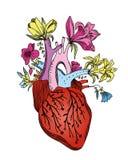 Flor del corazón fotografía de archivo