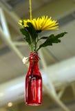 Flor del crisantemo en la botella de cristal roja de la ejecución diy para el florero Fotos de archivo