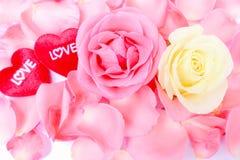 Flor del día de tarjeta del día de San Valentín y corazón rojo del amor. Foto común Fotografía de archivo libre de regalías