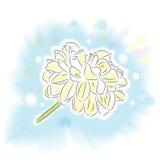 Flor del dahila de la acuarela Foto de archivo