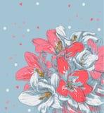 Flor del dibujo de la mano Fotografía de archivo libre de regalías