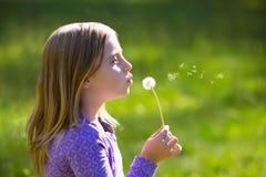 Flor del diente de león de la muchacha rubia del niño que sopla en prado verde Foto de archivo