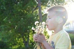 Flor del diente de león del perfil del niño pequeño que sopla en el verano Niño sonriente feliz que disfruta de la naturaleza en  Foto de archivo