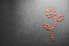 Flor del dinero Imágenes de archivo libres de regalías