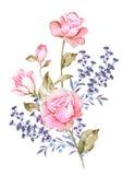 Flor del ejemplo de la acuarela en fondo simple Imagen de archivo libre de regalías