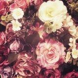 Flor del fack de Rose, pocilga del vintage Foto de archivo