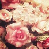 Flor del fack de Rose, pocilga del vintage Imagen de archivo