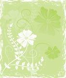 Flor del fondo de Grunge, elementos para el diseño, vector Imagenes de archivo