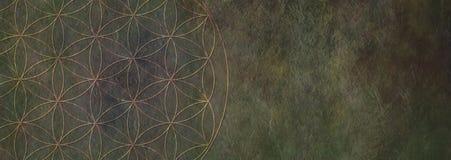 Flor del fondo de piedra rústico de la vida - fotos de archivo libres de regalías