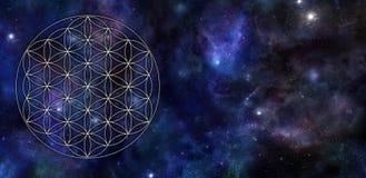 Flor del fondo del universo de la vida ilustración del vector