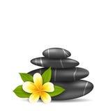 Flor del Frangipani (plumeria) y pirámide Zen Spa Stones Fotografía de archivo libre de regalías