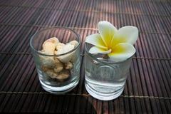 Flor del frangipani y decoración tropicales de la piedra. Imagenes de archivo