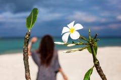 Flor del Frangipani y mujer joven en la playa imagenes de archivo