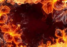 Flor del fuego Fotografía de archivo